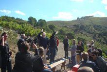 Fête des Vendanges à la Cave Tambour - 2013